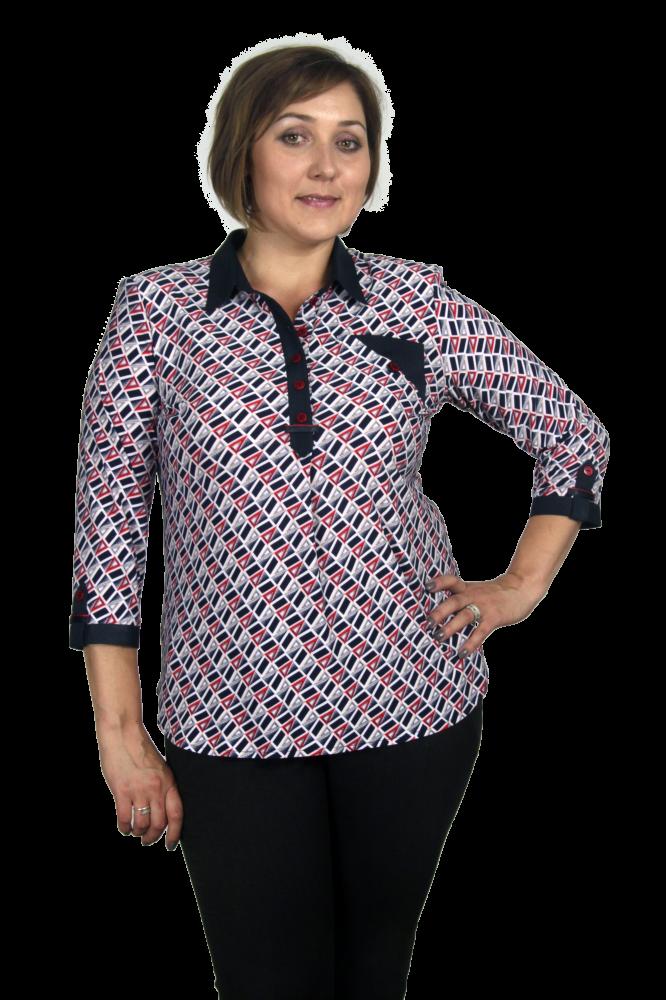 Блузка Сильва 1-1 фото