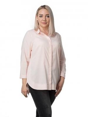Блузка Норма 3-2 фото